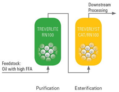 biodiesel processing - preesterification